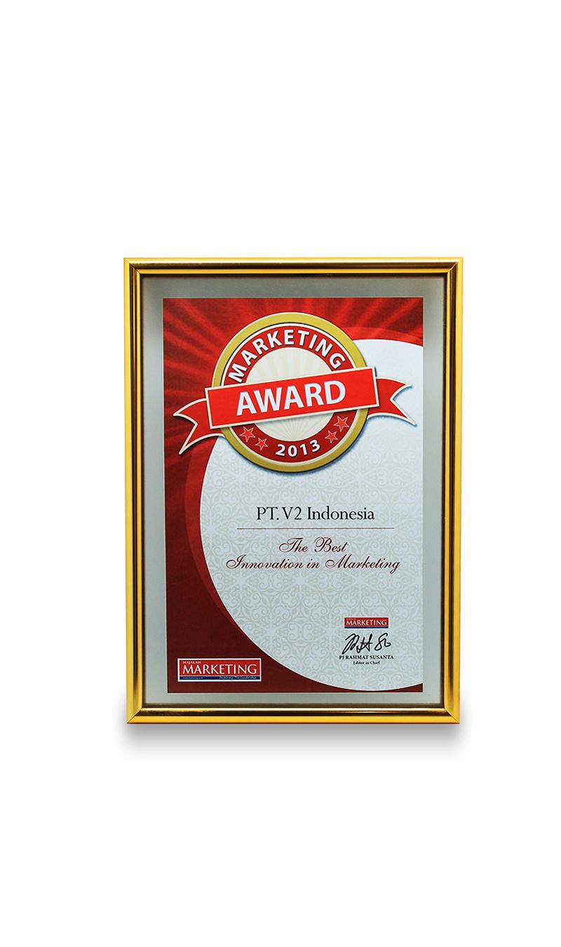 Marketing Award 2013 The Best  Innovation in Marketing