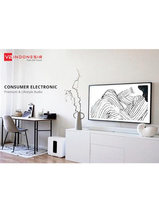 Consumer Electronic Catalog - 2021